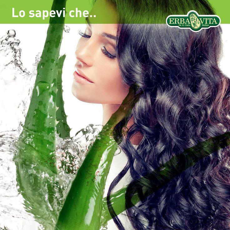 L'Aloe Vera Gel è un ottimo modellante e fissante per i capelli ondulati o ricci. #benessere #natura #prodottinaturali #ErbaVita