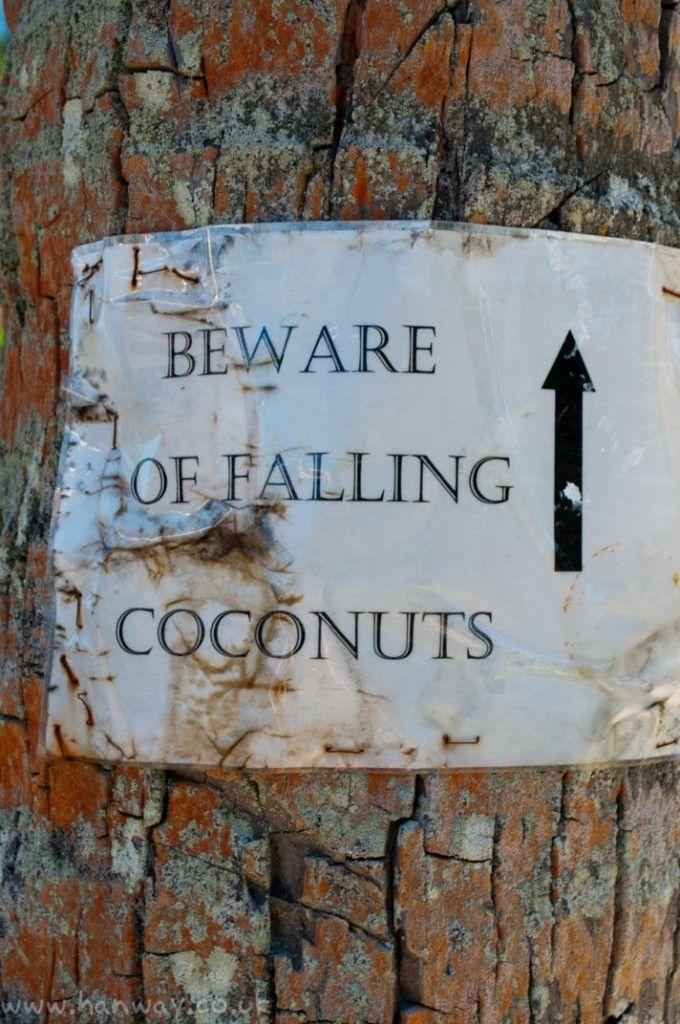 Mind your Head! Aitutaki - Cook Islands
