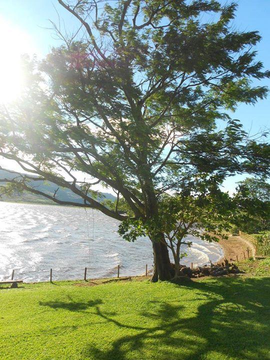 Lapinha da Serra, Serra do Cipó - MG. #tree, #wind, #lake, #sun