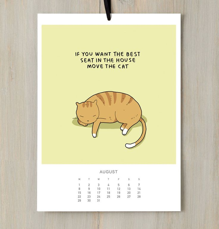 AUGUST 2016 - If you're a cat person, you need a daily dose of catness just to keep you going! Because cats make us so much happier. They also make our homes a cosier place. No wonder people say that home is where a cat is!   And what can be better than this Cats Calendar to remind you every day that no matter what time of year it is, cats are there to make you smile and give you lots of warmth and comfort.