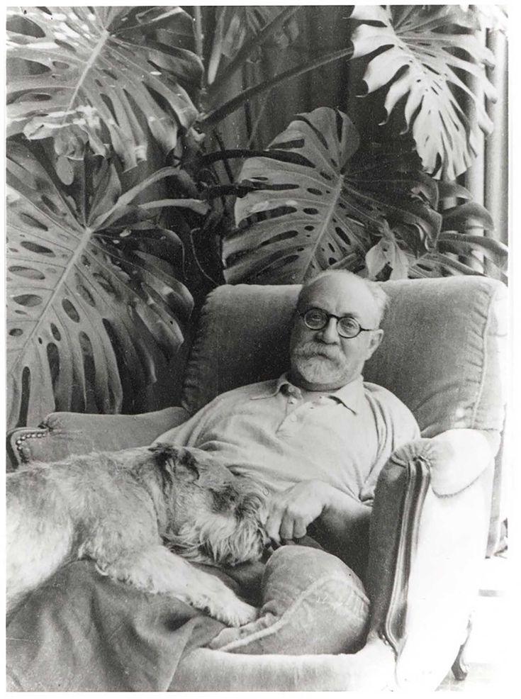 """Henri Matisse foi um pintor, desenhista e escultor francês. Nasceu em 31 de dezembro de 1869 e morreu em 3 de novembro de 1954 com 84 anos. Ele é conhecido essencialmente por desenhar formas simples. """"If my story were ever to be written truthfully from start to finish, it would amaze everyone."""" citação de Matisse"""