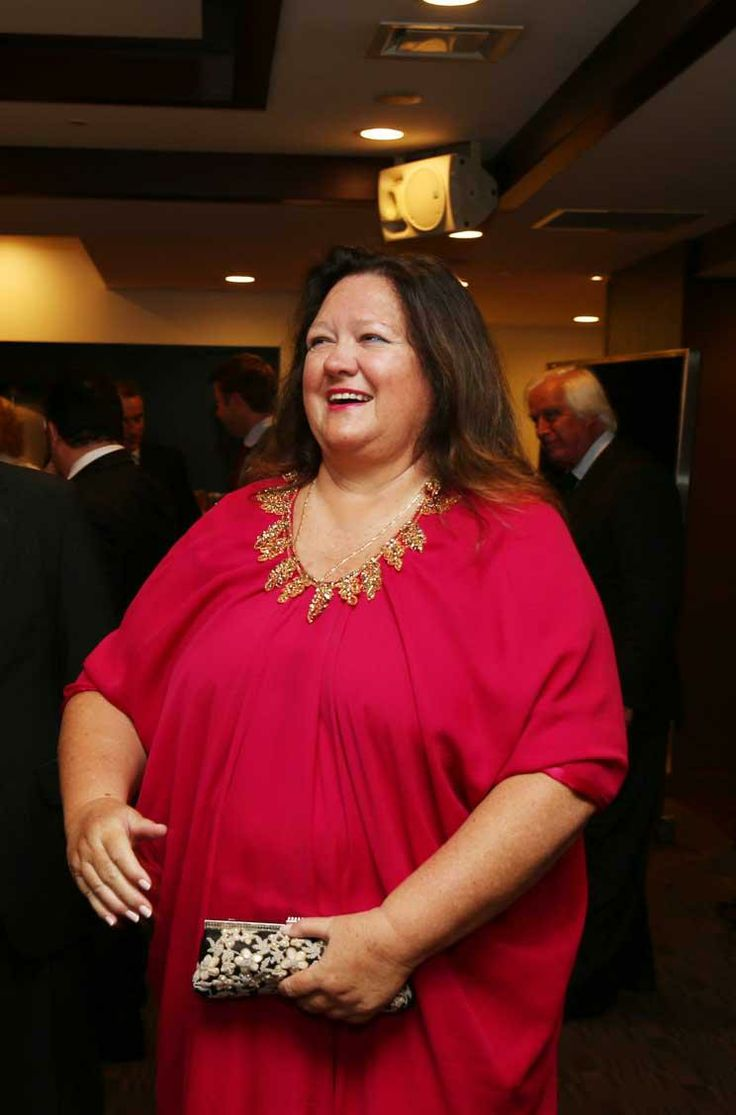 Australia's biggest private taxpayer, Gina Rinehart expects this year to finalize her biggest deal yet, a $7 billion debt package to develop...