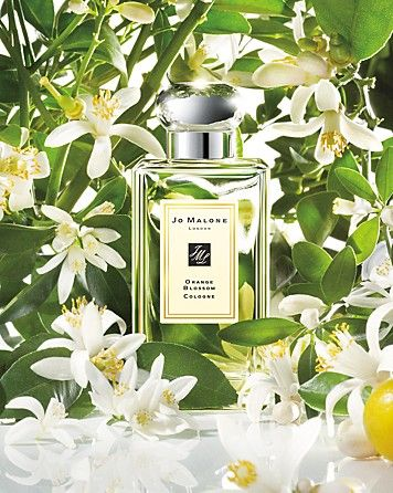 Jo Malone™ Orange Blossom Collection   Bloomingdale's