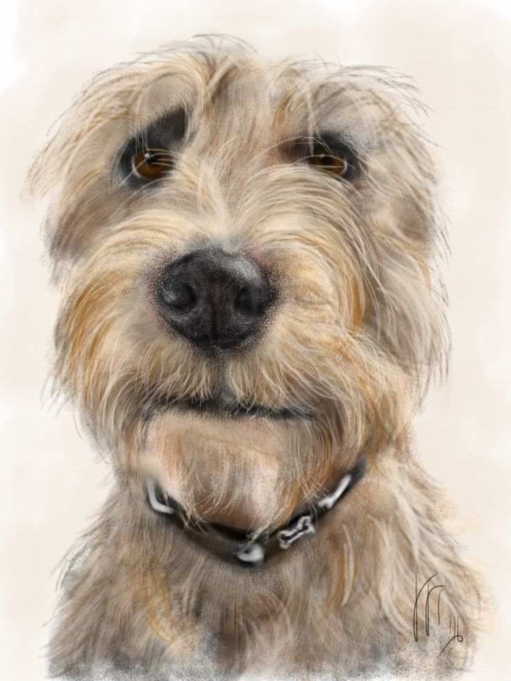 Custom Dog Pet Portrait, custom portrait, dog portrait, pet portrait, dog lover, dog art, gift, wall art, dog, artwork, pet memorial, pet by LITDigitalPaintings on Etsy