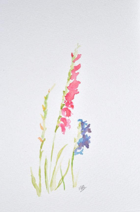 Watercolor Gladiolus Painting Original Watercolor by MABArtStudio