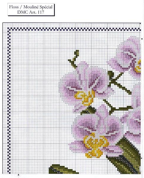 ♥Meus Gráficos De Ponto Cruz♥: Belíssimas Orquídeas em Ponto Cruz