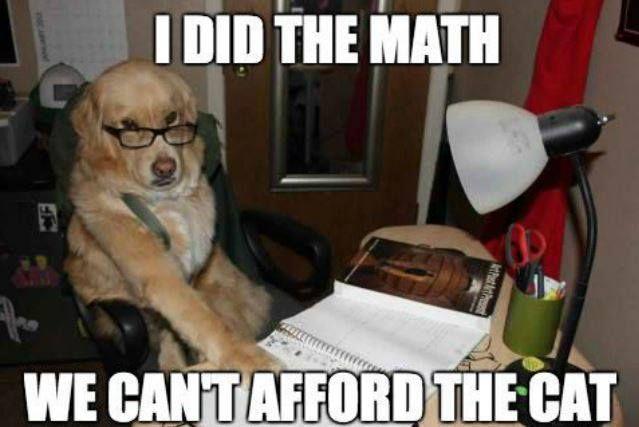 36 Best The Economics Encounter Images On Pinterest Funny Photos