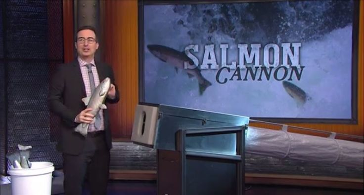 Celebrites Get Blasted with a Salmon Cannon http://www.wideopenspaces.com/celebrites-get-blasted-salmon-cannon-video/