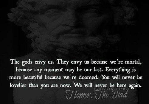 Quotes About Greek Mythology: 25+ Best Homer Quotes On Pinterest