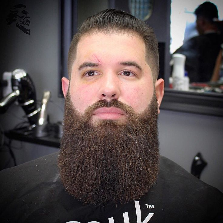 Big Beard Trim Trimmed Beard Styles Beard Trimming