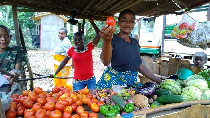 <p>De erbarmelijke kwaliteit van het zaaizaad op de lokale markten in Afrika is een onderschat probleem. Het is een rem op landbouw en de voedselproductie stelt Harald Peeters van Qsem. Aan zaaizaad geen gebrek op de lokale Afrikaanse markten. En het is goedkoop. Maar het is vooral onbetrouwbaar. De kiemkracht is vaak slecht en je weet nooit zeker welk ras je koopt. 'Het is niet eens zeker om welke groente het gaat', vertelt Harald Peeters. Peeters is directeur van Qsem, de Tanzaniaanse ...