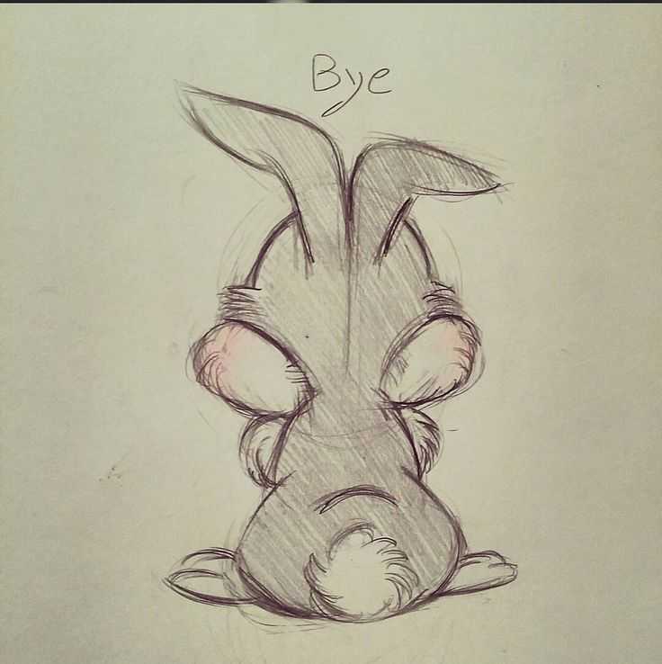 #thumper  #doodle                                                                                                                                                                                 More