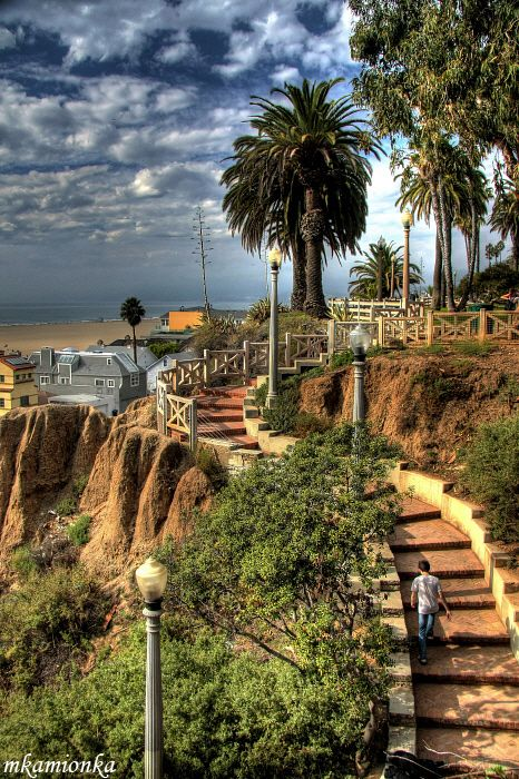 Palisades Park in Santa Monica, California. The stairs connect Palisades Park (to the right) with a bridge (not visible here) which takes you above PCH1 straight to the beach. by mkamionka