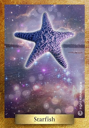 Stars and starfish are celestial symbols representing divine love, inspiration and intuition. To the Egyptians Starfish represents the Goddess Isis; to Christians the Starfish represents the Virgin Mary. In ecology the Starfish is a keystone species that plays a critical role in the ecosystem. * One of the 48 cards in the EcoHeartOracle.com - this is a brief description and not the complete oracle meaning.