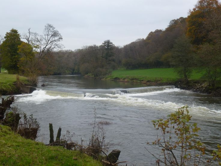 Weir on the River Tamar just below Horsebridge.