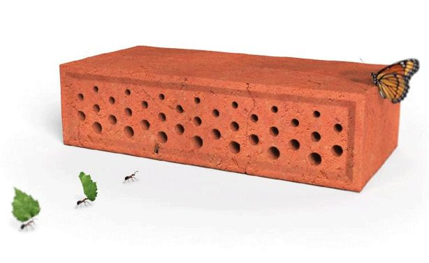 How to Make a Habitat for Urban Wildlife With Bee Houses, Birdhouses, Insect Hotels, and Planter Boxes