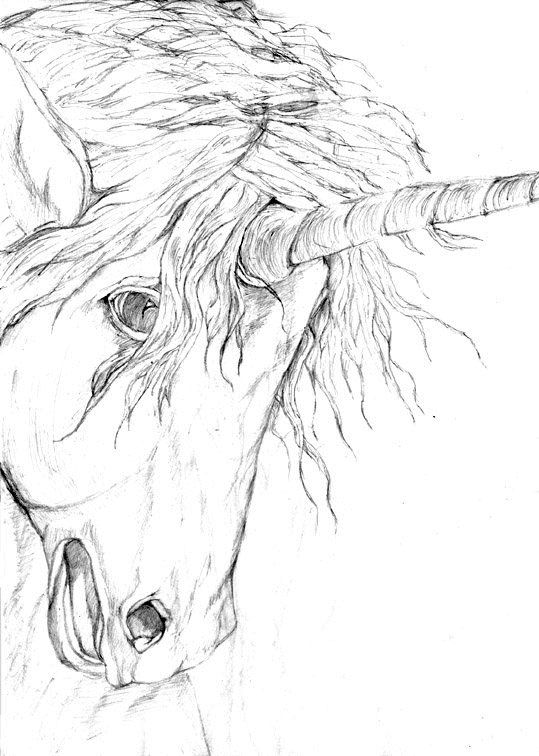 unicorncoloringpages10gif 539 756 pixels woodburning Pinterest Coloring Unicorns and