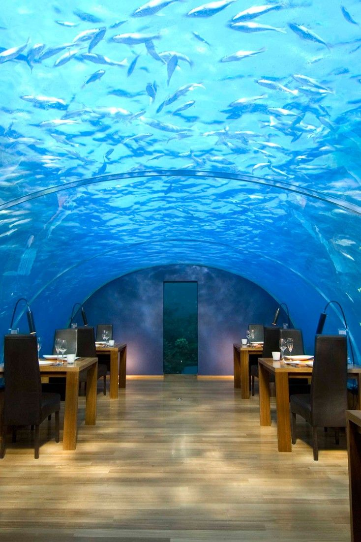 Ithaa undersea restaurant is a surreal dining experience for Ithaa restaurant maldives