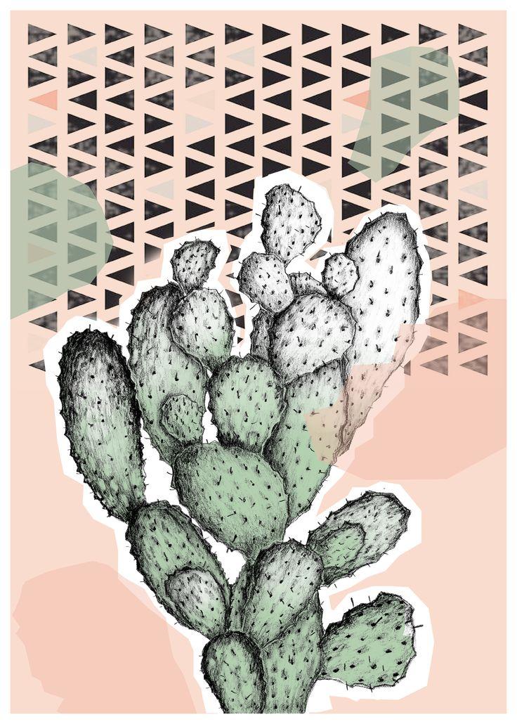 Cactus cactus catus! Instagram: acupofmestudio
