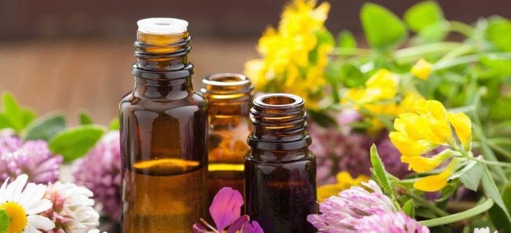 Inca din antichitate, femeile au cautat ingrediente naturale pentru a-si ingrijini frumusetea. Asa au invatat sa cunoasca pretioasele virtuti ale florilor, fructelor, ierburilor si radacinilor.