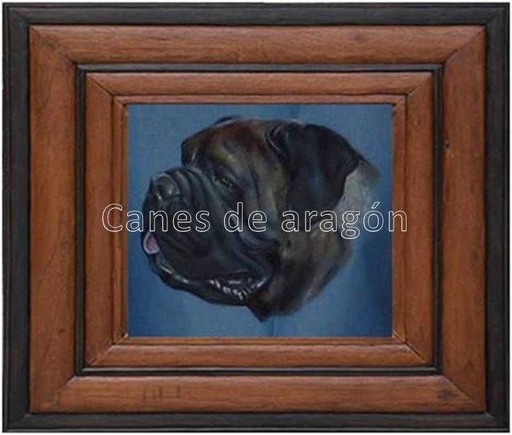Retrato de Bullmastin. Autor: Alexander Restrepo González. Medellín-Colombia. Pintura de mascotas por encargo.