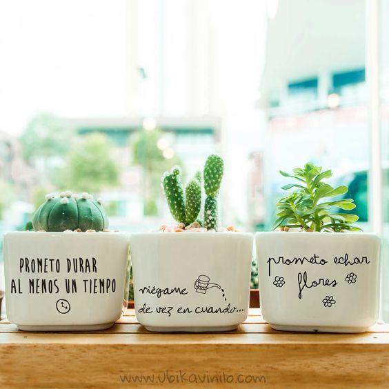 Alegra tus plantas decorando las macetas de una manera muy original y divertida. Encuentra más vinilos en: www.ubikavinilo.com: