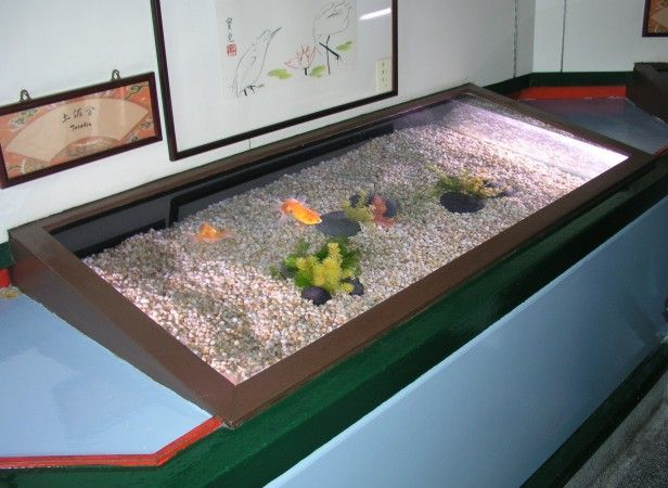 17 best images about cool fish tanks on pinterest for Cool fish tanks for sale