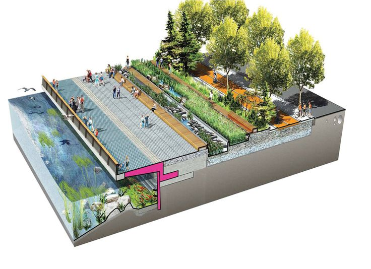 BY KATHARINE LOGAN From the July 2014 issue of Landscape Architecture Magazine. Before Seattle grew up on its shores, Elliott Bay was a bluff-backed beach, with intertidal marshes and mudflats providing a complex and varied habitat for birds, fish, and marine invertebrates. Its sloping beaches offered salmon a safe passage through shallow waters, with plenty to….