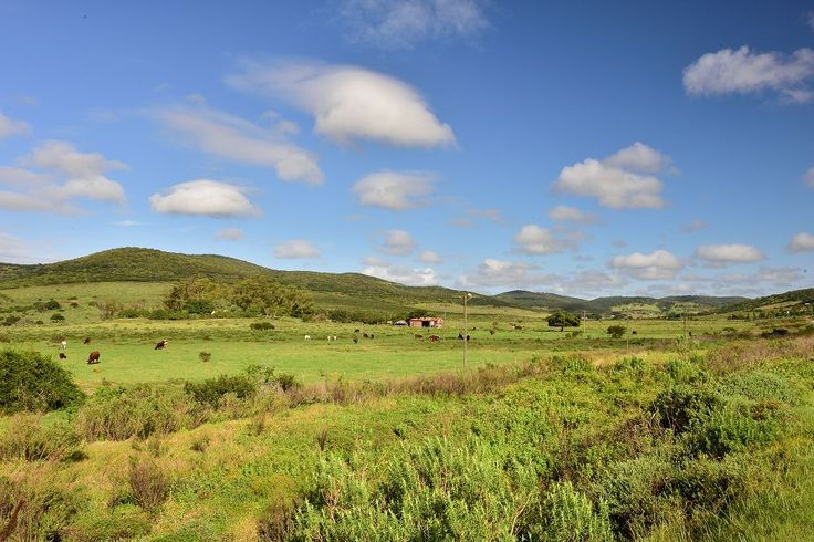 The magic of the Eastern Cape in 10 pictures