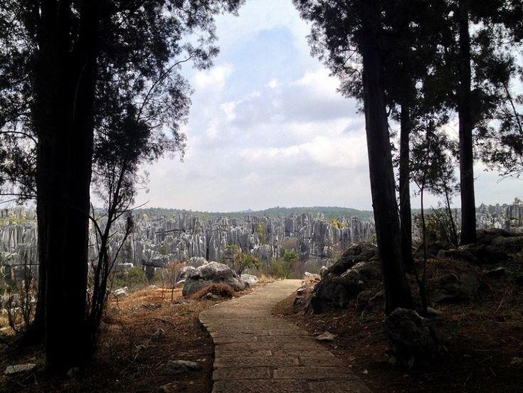 Taş Ormanı, Kireç taşı Oluşumları, Yunnan, Çin