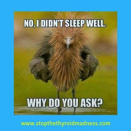 Lol-Sleep what's that??