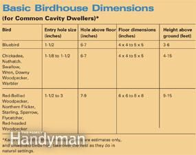 Basic birdhouse dimensions