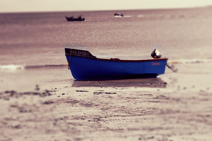 Saldanha bay-Fishing Village in the Western Cape, these small boats are used to catch fish