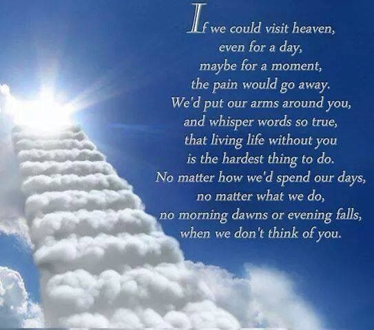 9 Year Death Anniversary Quotes: 117 Best Images About Rainbow Bridge On Pinterest