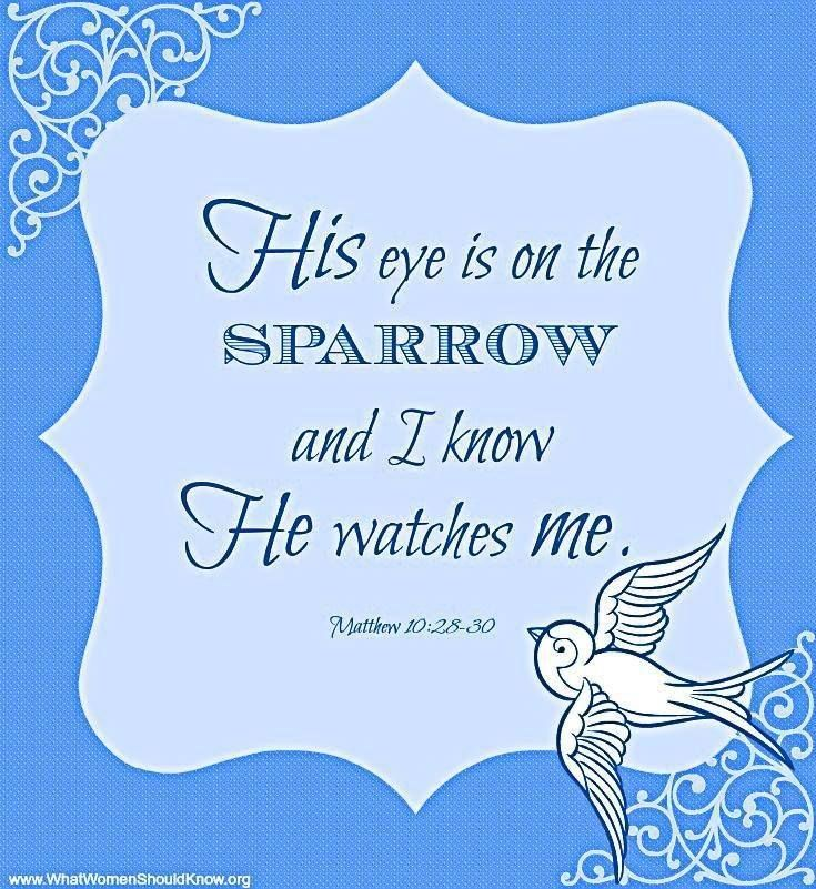 All Music Chords his eye is on the sparrow music sheet : 32 best And I Know He Watches Me images on Pinterest | Music ...