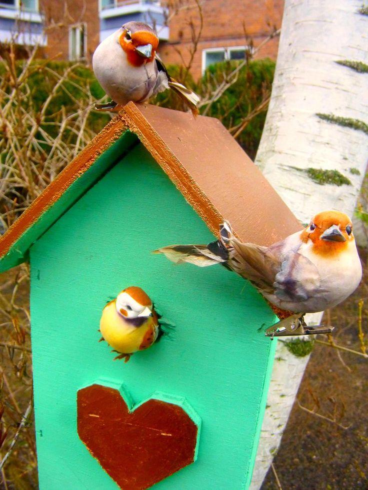 "Birdhouse is covered Sugar Spray´s ""Sherbet""."