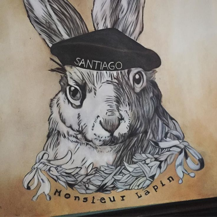Great get back to the @twrstgo White Rabbit today with a proper entourage - A Santiago staple!