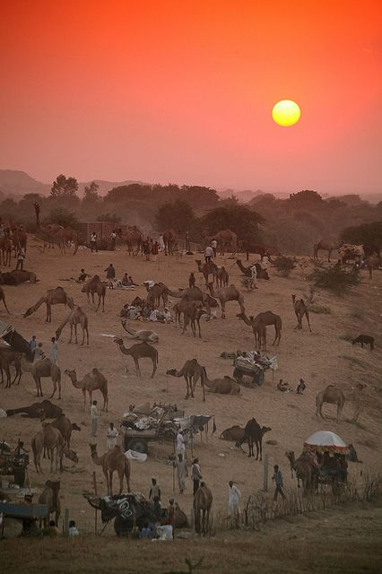 http://lakani.com/tours/india/pushkar-2013/ // Pushkar sunset by 369Photography.co.uk, via Flickr