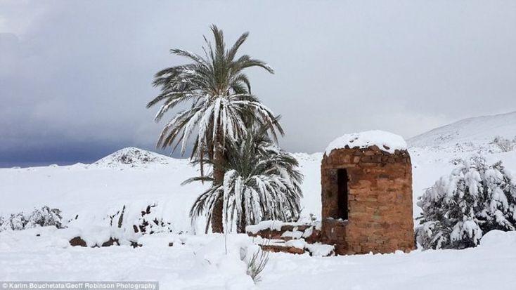 Saharu zasiahlo najväčšie sneženie v histórii. Ľudia si na púšti stavali snehuliaky a sánkovali sa | interez.sk