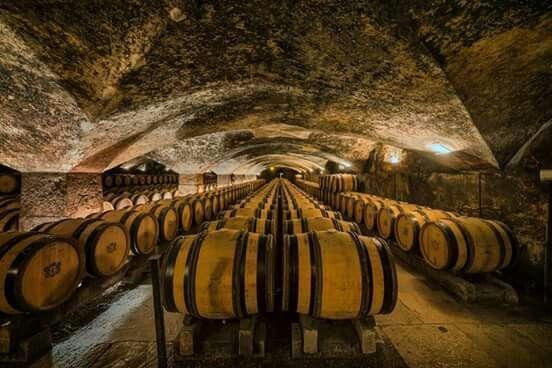 Château De Meursault...Wine Cellars