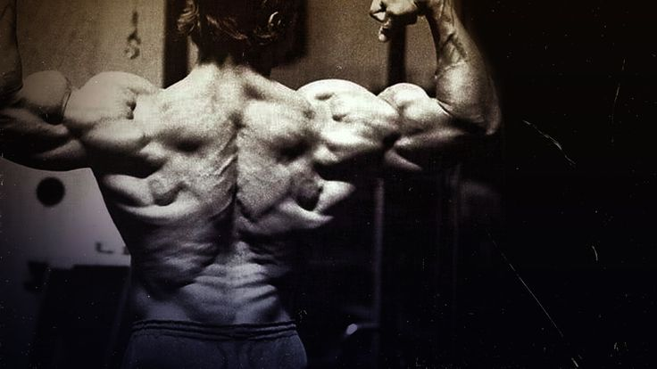 A big, strong back is critical to success in any strength sport. Dr. Mike Israetel breaks down optimal training parameters for hypertrophy training specific to the back: