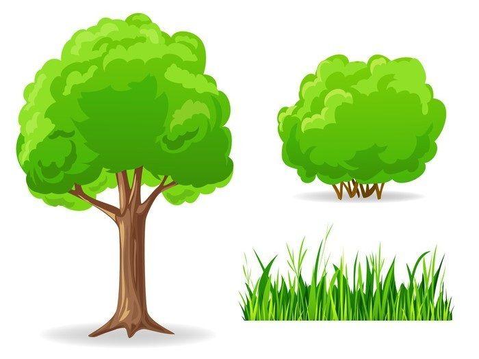 Картинки кустов и деревьев для детей детского сада