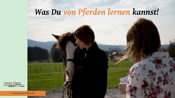Was du von Pferden lernen kannst! - Janet Metz - Pferdegestützte Persönlichkeitsentwicklung