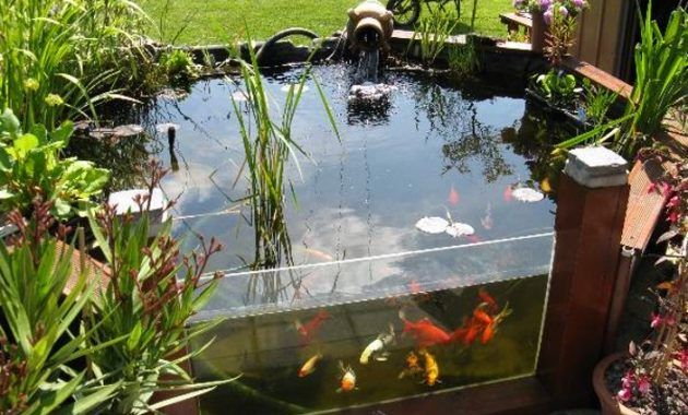 17 meilleures id es propos de bassin pour poisson sur pinterest bassin poisson exterieur. Black Bedroom Furniture Sets. Home Design Ideas