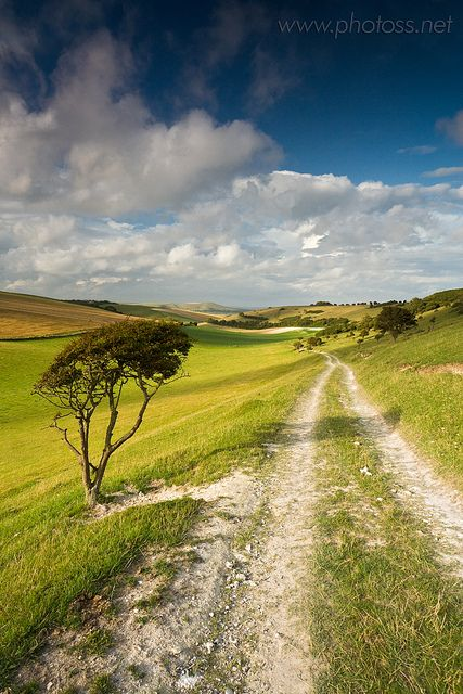 South Downs National Park near Telscombe, East Sussex, England.