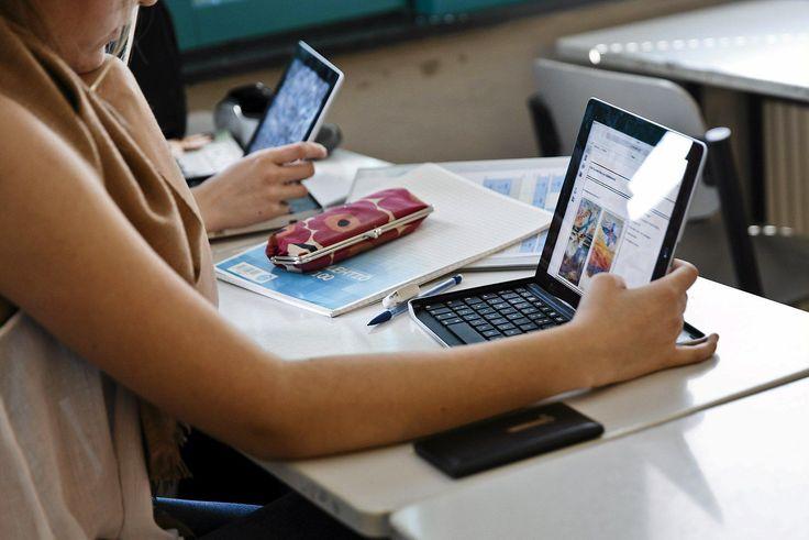 Tyttöjen nettilukutaito osoittautui merkittävästi poikia paremmaksi. Ero paljastui Suomen Akatemian eSeek-tutkimushankkeessa, jossa testattiin 160 kuudesluokkalaisen nettilukemisen taitoja avointa internetiä simuloivassa oppimisympäristössä.