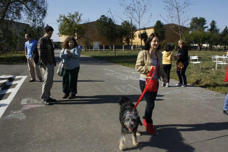 """Vizitatori si catei in cadrul evenimentului """" Ziua Portilor Deschise la Dogtown"""""""