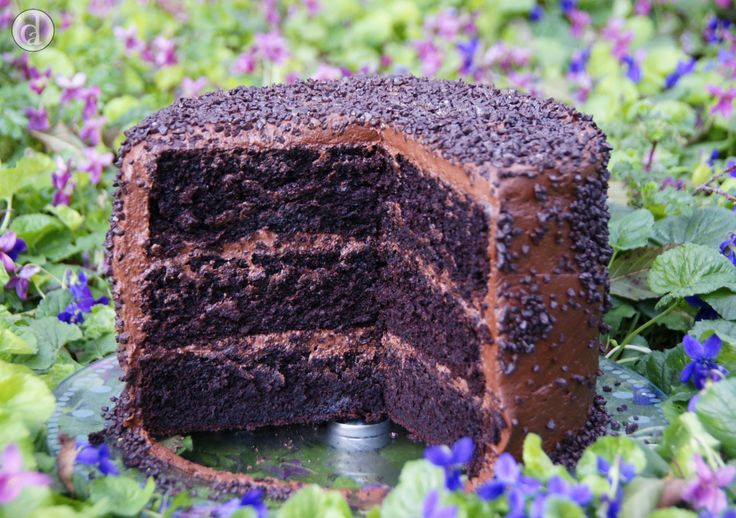 Absolutely delicious! Seriously this is the best chocolate cake I've had (the cake being gluten free is a bonus for my friends who are on gf diets)