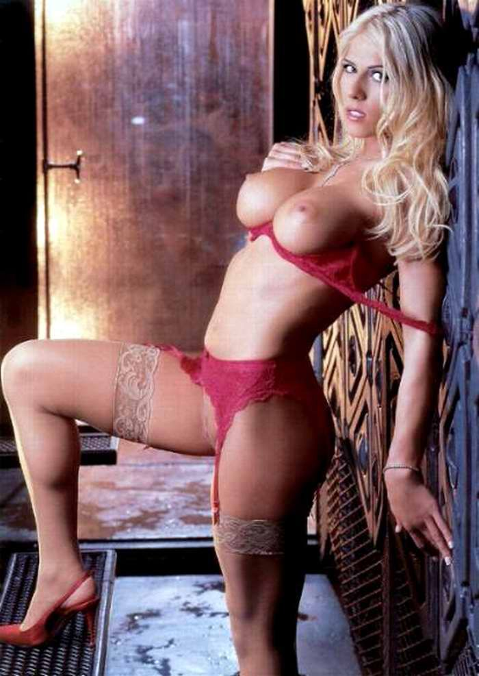 Torrie anne wilson nude remarkable, rather