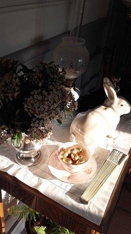 Lièvre de Pâques - Périgord